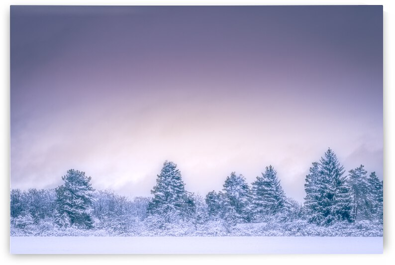 Winter landscape by ATTiLA GiMESi