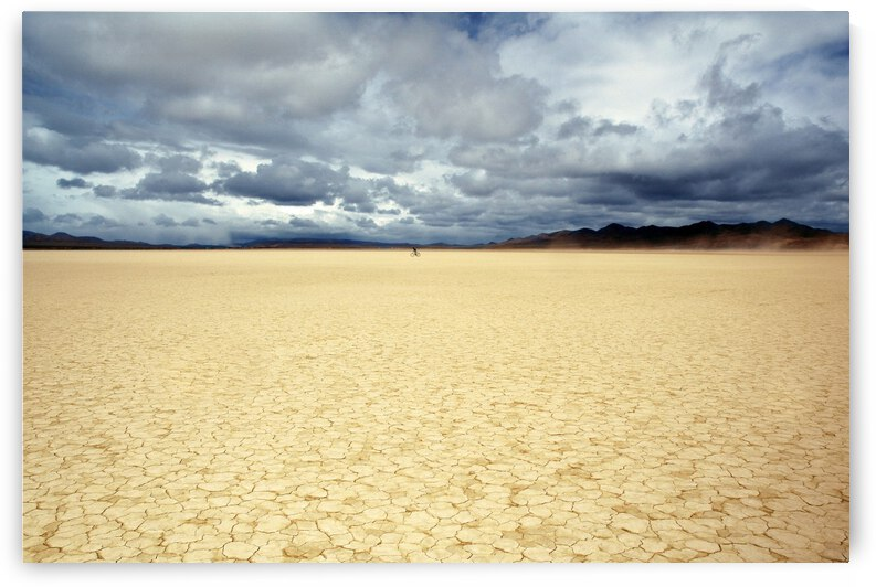 Bicyclist on the Playa by Evan Petty Photography