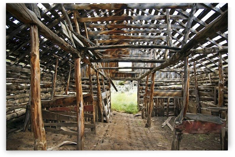 Historic Nevada Homestead Barn by Evan Petty Photography