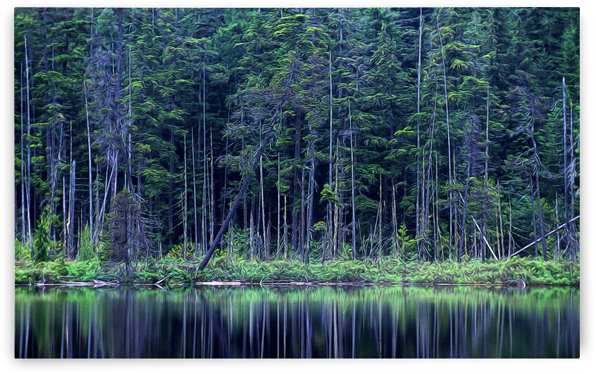 Forest by the Lake by COOL ART BY RICHARD