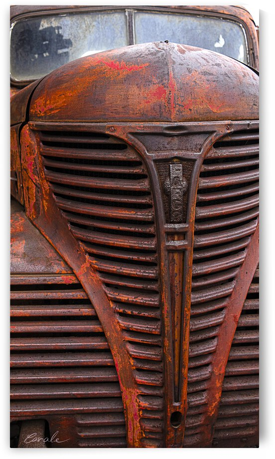 Belle vieille carcasse - Beautiful Old Carcass by Pierre Cavale