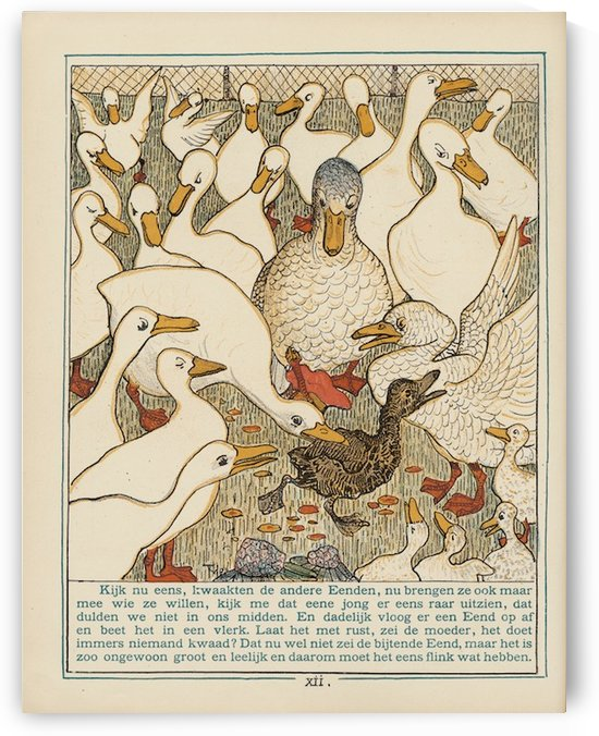 Ducks by VINTAGE POSTER