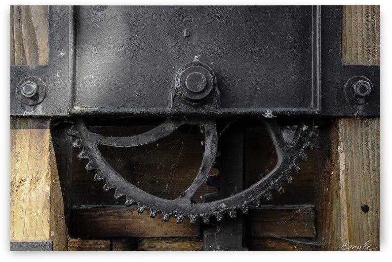 Une roue figee dans le temps by Pierre Cavale