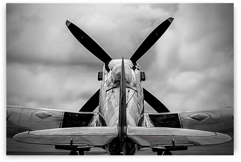 Spitfire Backside Limited Edition 50 Prints only by BeauCheri
