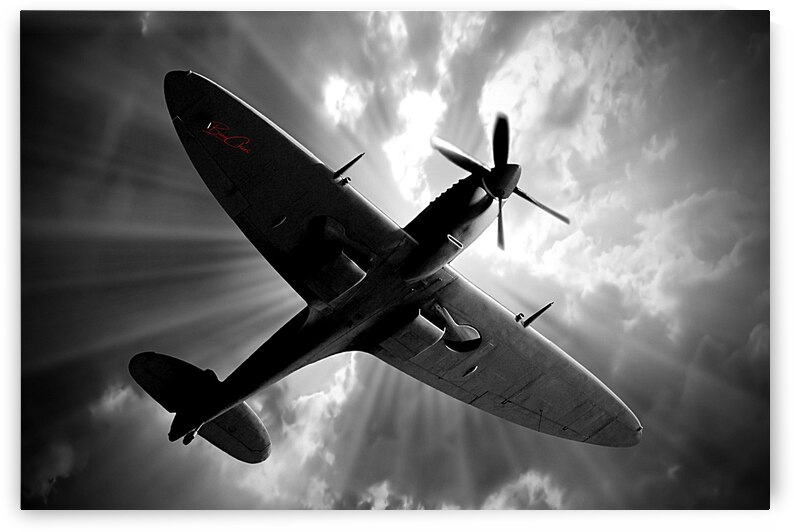 Spitfire Angel Limited Edition 50 Prints only by BeauCheri