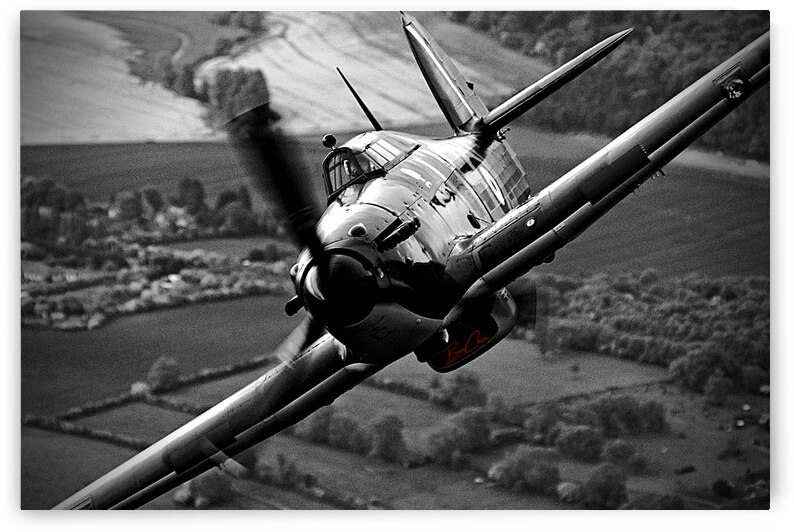 Spitfire Selfie Limited Edition 50 Prints only by BeauCheri
