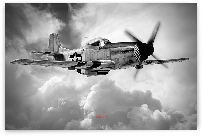 P-51 Vintage Limited Edition 50 Prints only by BeauCheri