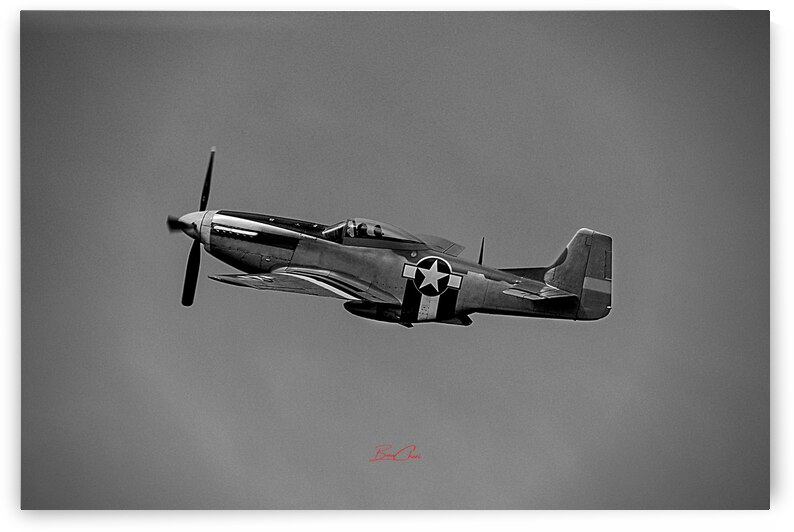 P-51 Mustang Limited Edition 50 Prints only by BeauCheri