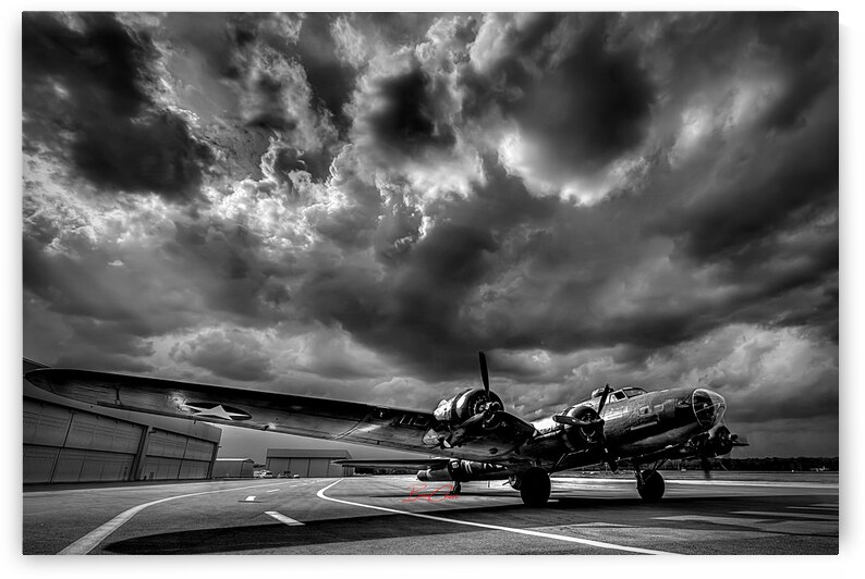 Bomber Grounded Limited Edition 50 Prints only by BeauCheri