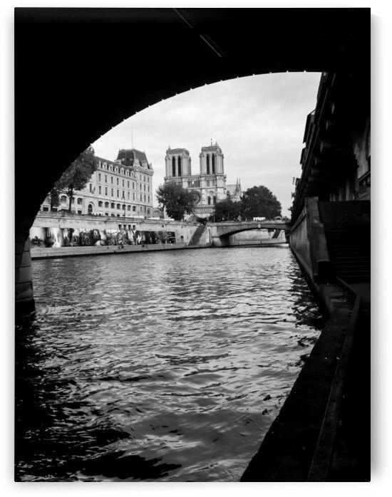 Notre-Dame de Paris  by Andre Luis Leme