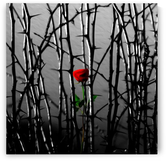 Bloom In Adversity Motivational Wall Art by ABConcepts