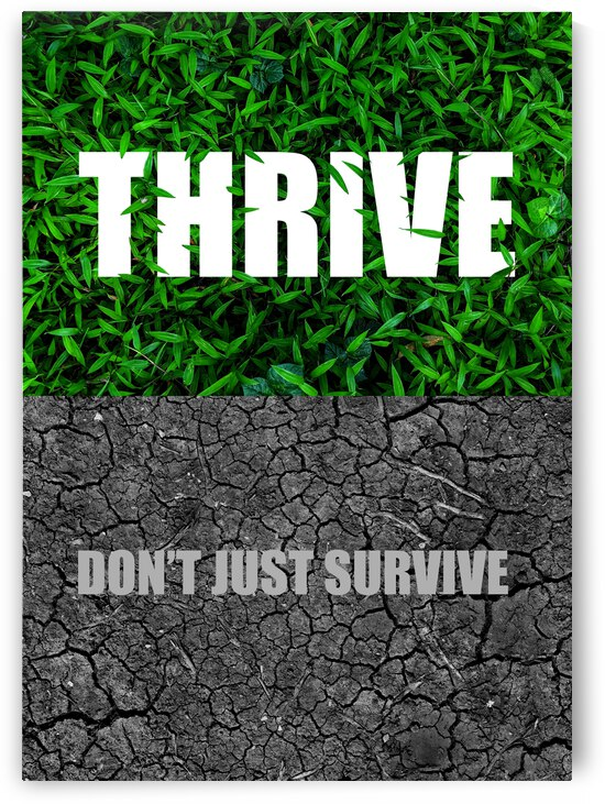 Thrive Motivational Wall Art by ABConcepts