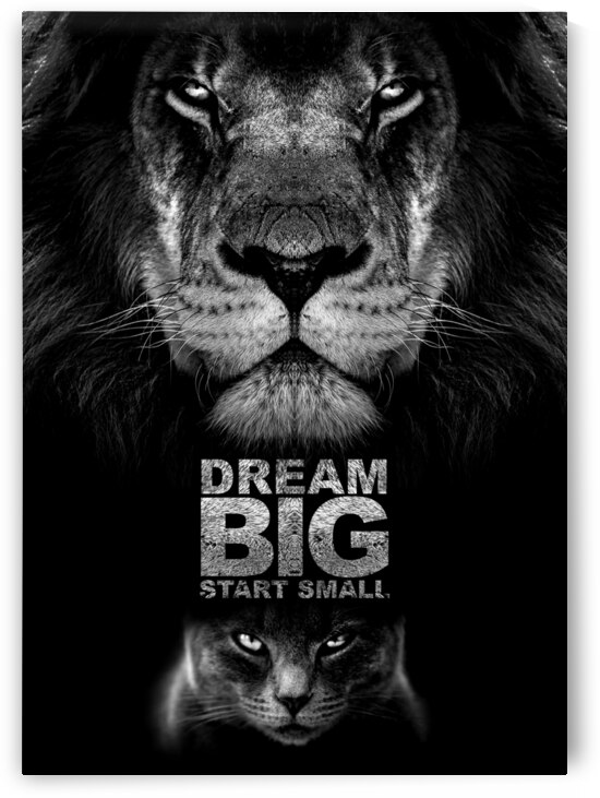 Dream Big Start Small Motivational Wall Art by ABConcepts