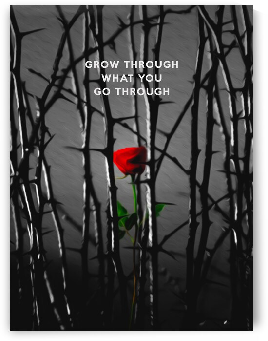 Grow Through What You Go Through  Motivational Wall Art by ABConcepts