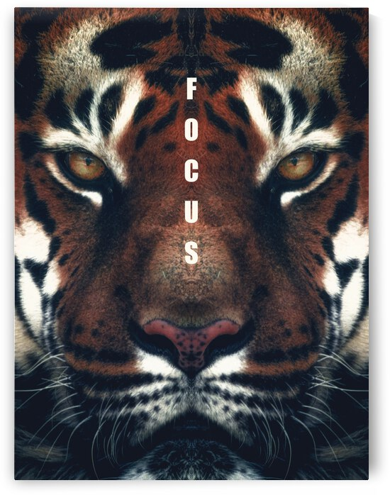 Tiger Focus Motivational Wall Art by ABConcepts