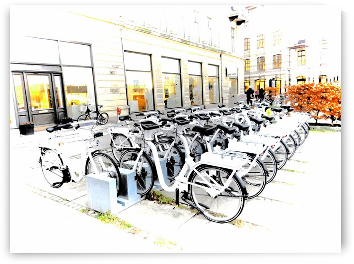 Bicycles for Hire by Dorothy Berry-Lound