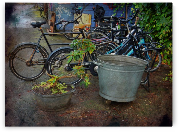 Parking Boundary Christiania Copenhagen by Dorothy Berry-Lound