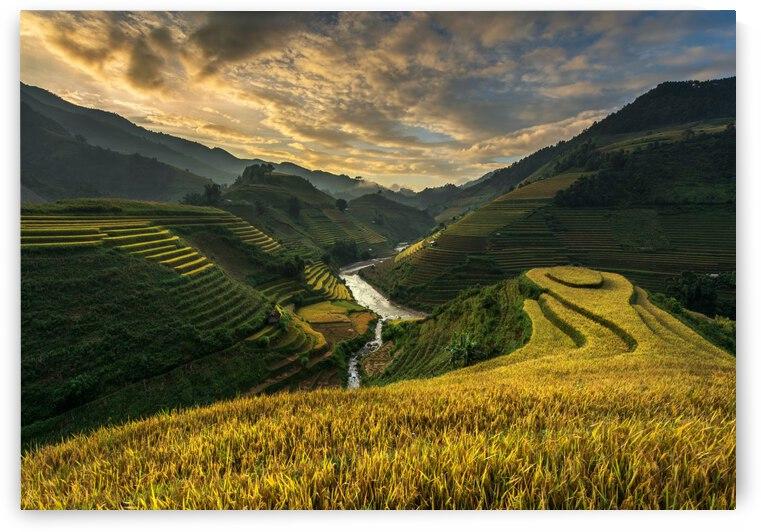 RiceTerrace ( vietnam) by 1x
