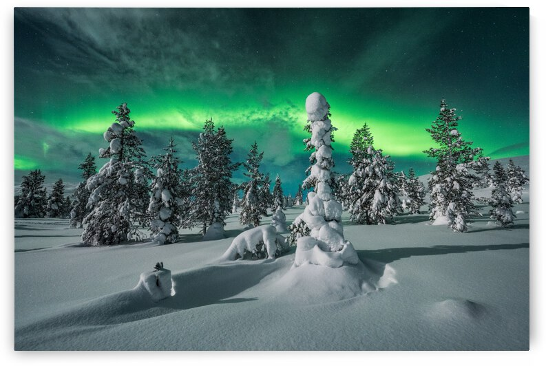 polar night by 1x