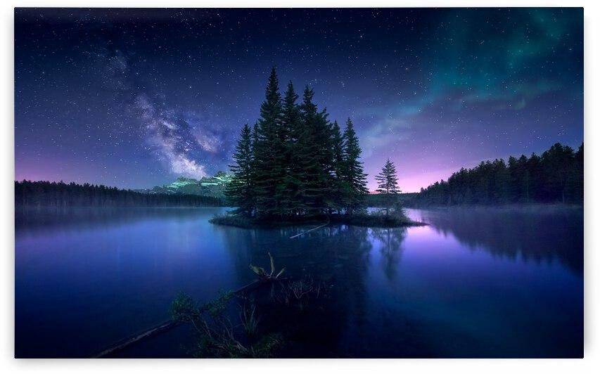Dreamy Night by 1x