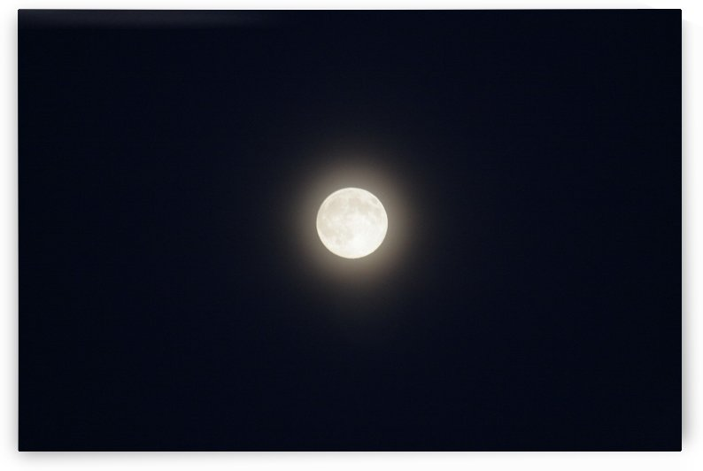 Harvest Moon by Tara K