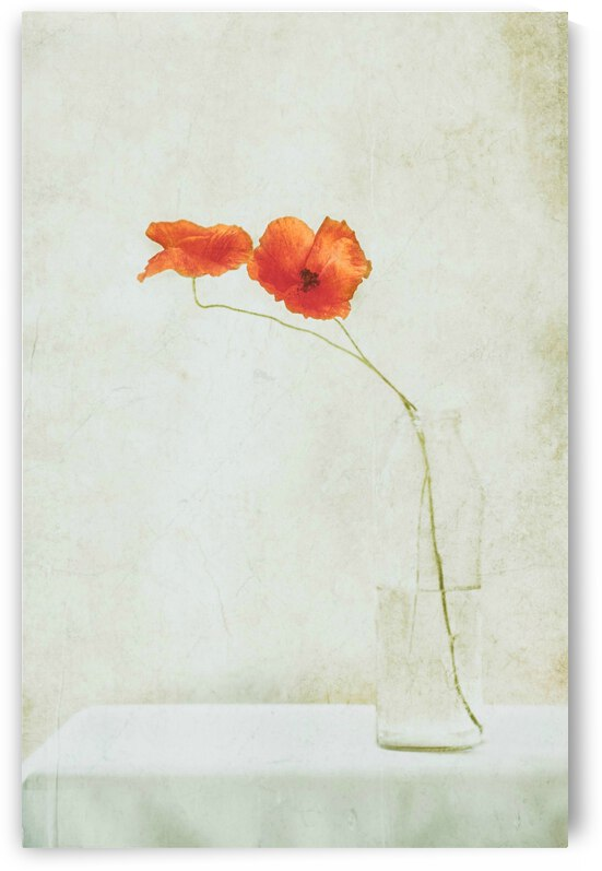 Two Poppies in a Bottle by 1x