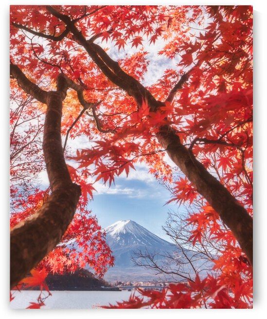 Mt.fuji is in the autumn leaves by 1x