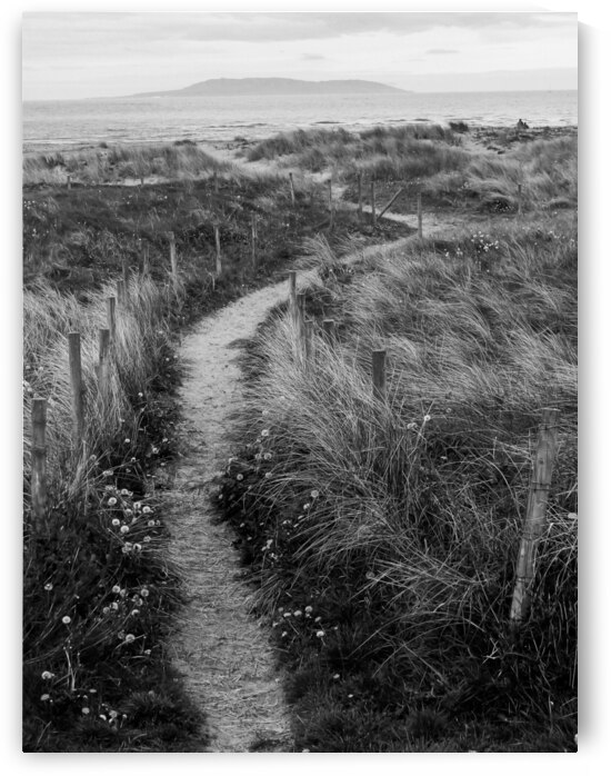 Path to the Sea by Andre Luis Leme
