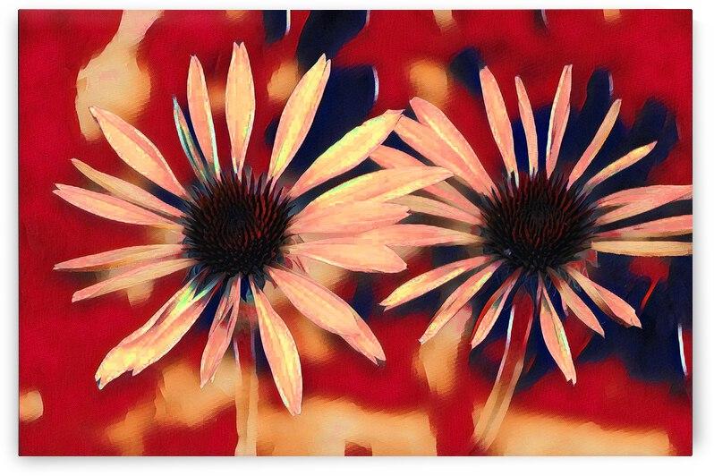Two Coneflowers by Barbara Treen