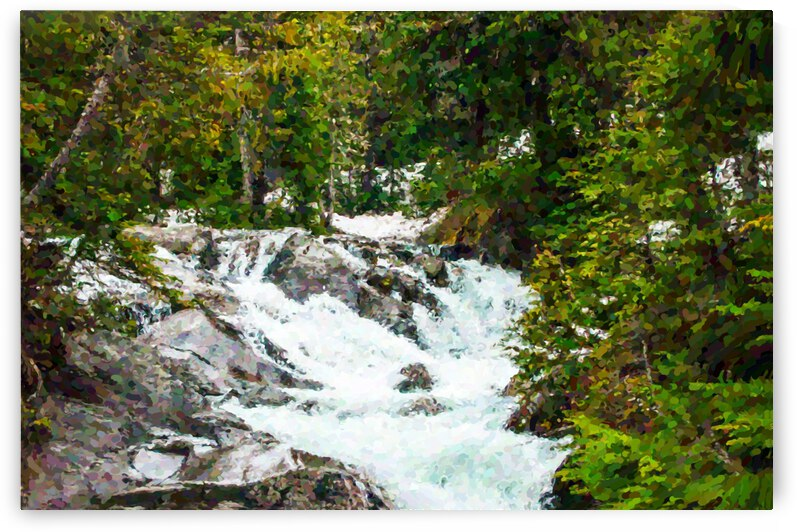 Mountain Stream by Barbara Treen
