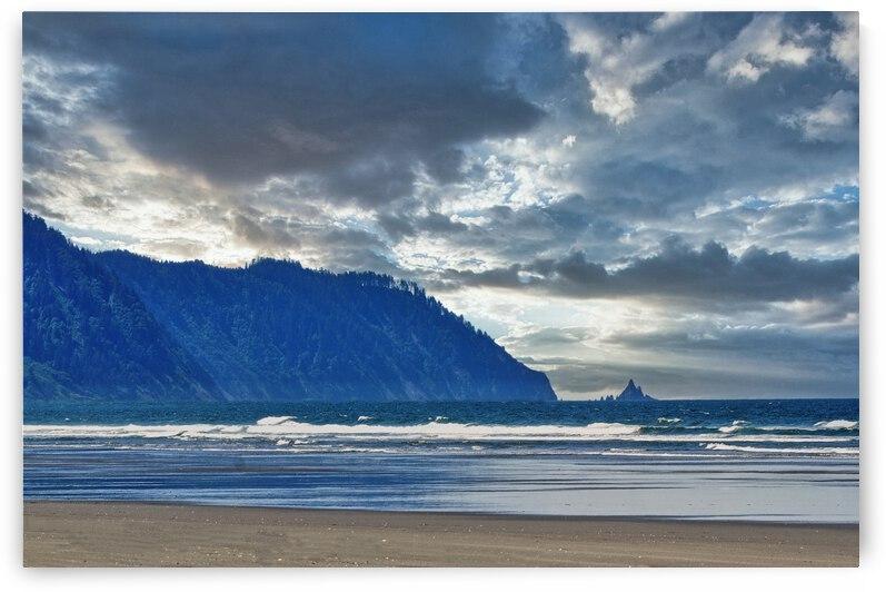 Gearhart Beach and Sky by Barbara Treen