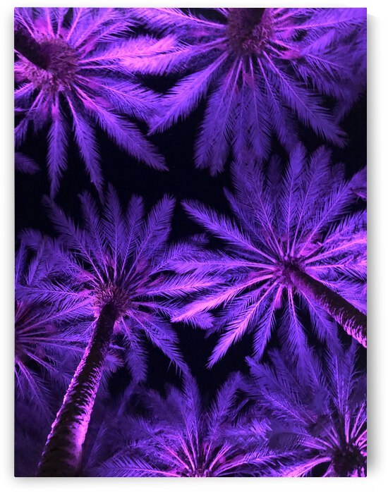 Electric Palm - Violet by The Moment Rocks