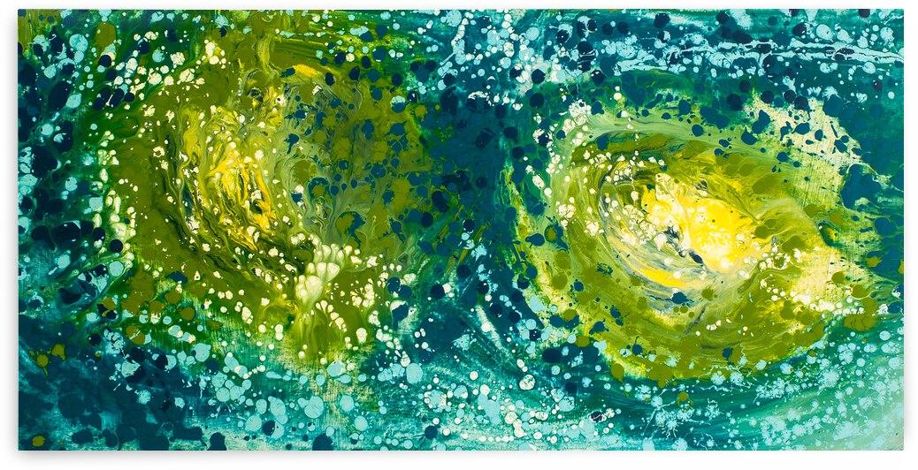 Watered Loggerhead by Dianne Bartlett