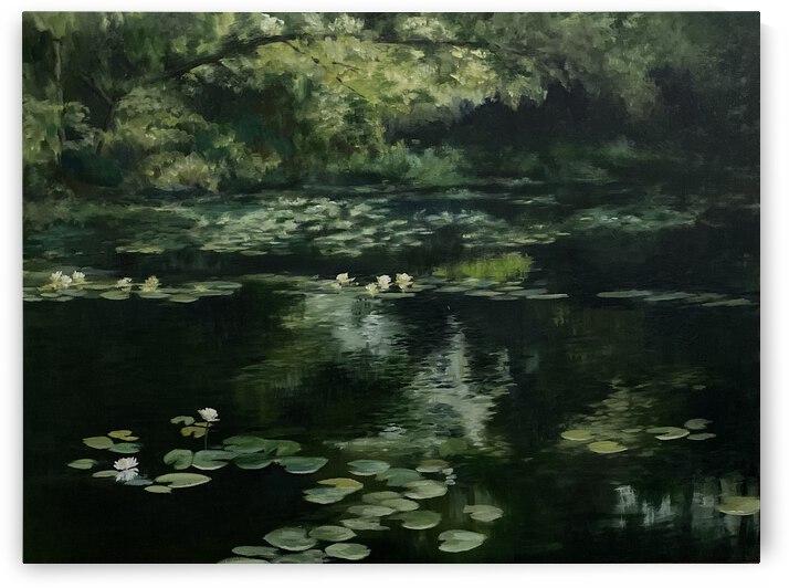 Wanda's pond by Cene