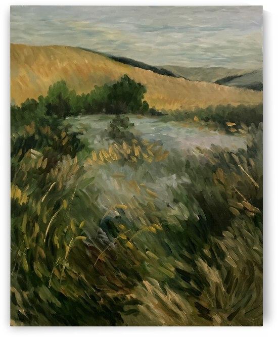 Arkansas field by Cene