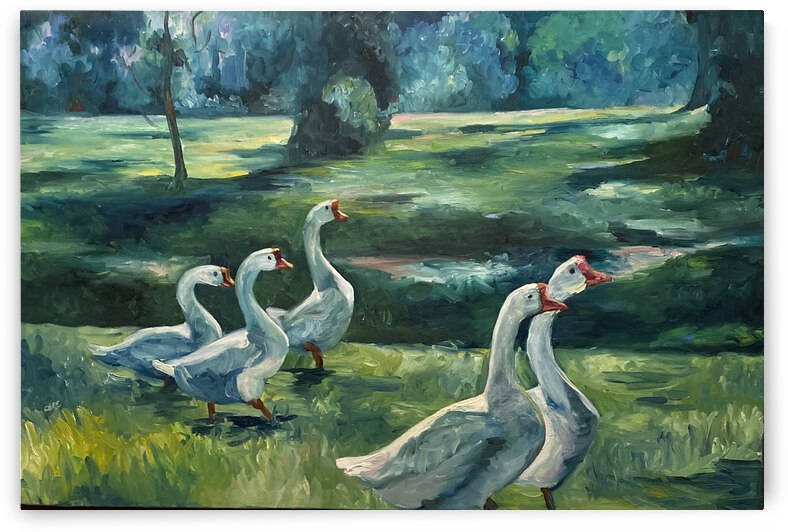 Geese at St. Francisville by Cene