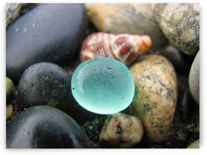 Sea Glass and Seashell by J  Jasmyn Phillips
