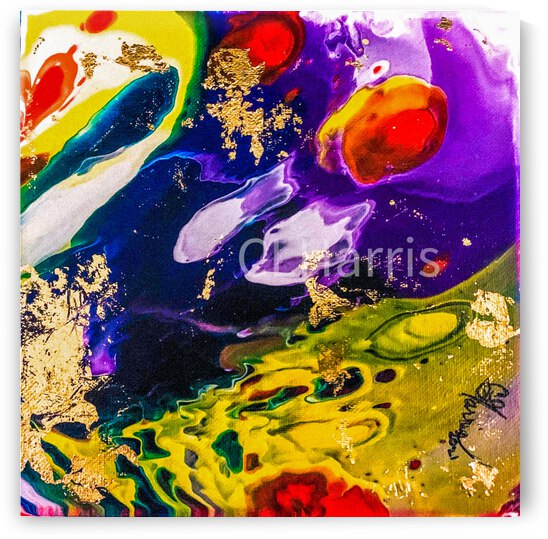 Fragmented Universe by Cynthia L Harris