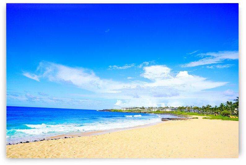Shipwreck Beach Kauai by 24