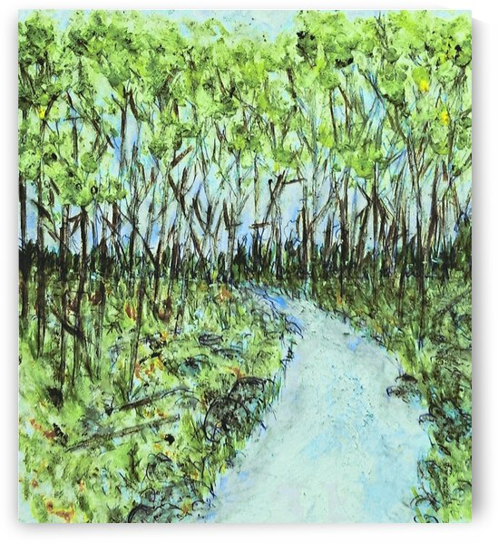 Forest Creek by djjf