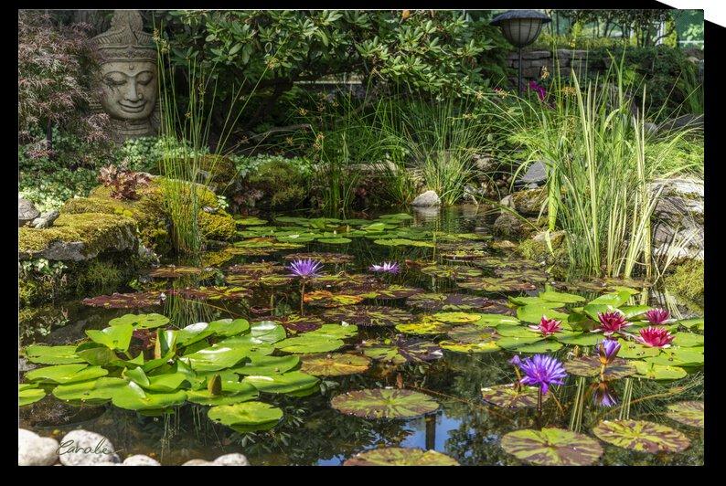 Divin Jardin d   eau   Divine Water Garden by Pierre Cavale