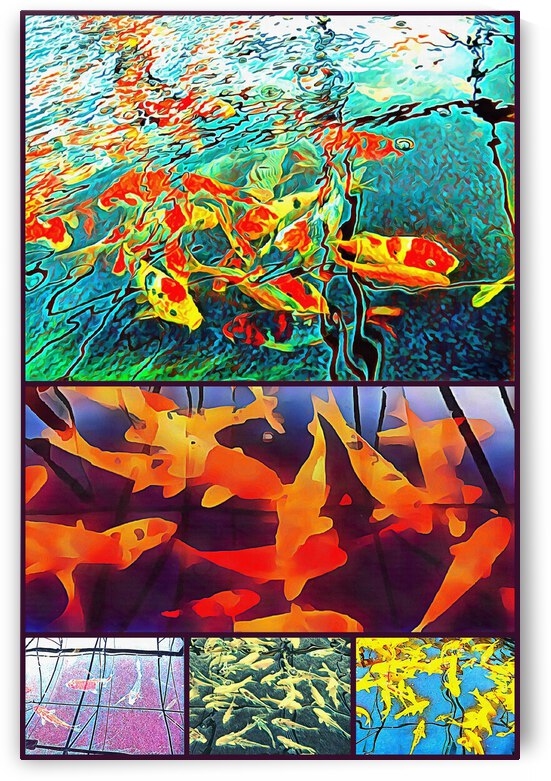 Fishy Patterns Collage by Dorothy Berry-Lound