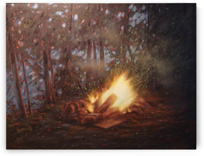 My Campfire, Lake Lavalle, Ontario by peter crighton