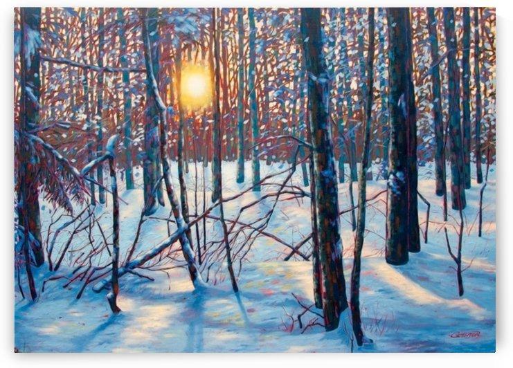 Winter Sunset, Bass Lake, Ontario by peter crighton