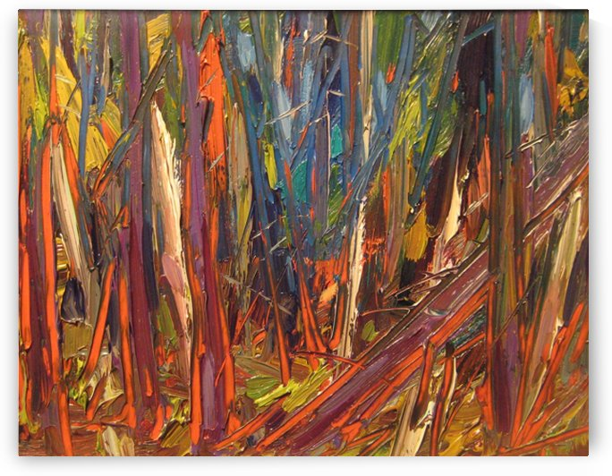 Forest Sketch, Northern Ontario by peter crighton