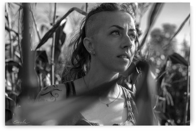 Belle guerriere 2   Beautiful warrior 2 by Pierre Cavale