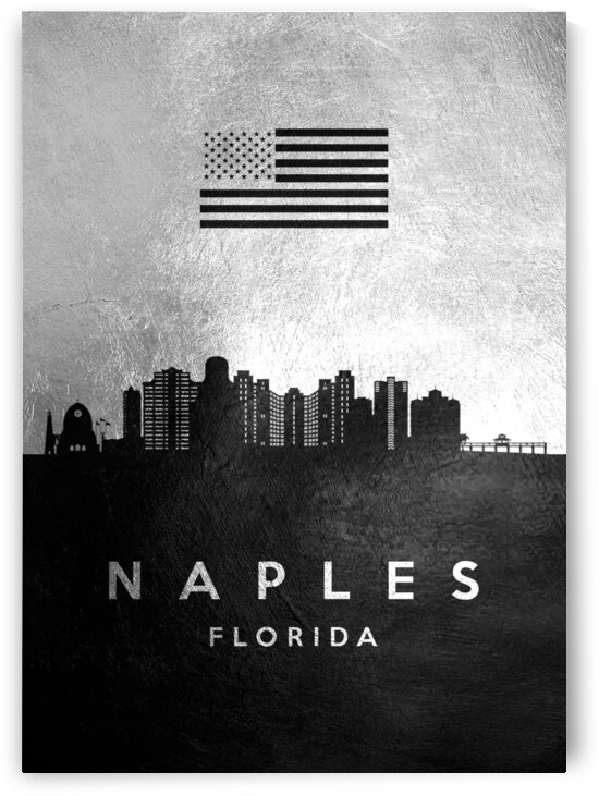 naples florida silver skyline 2 by ABConcepts
