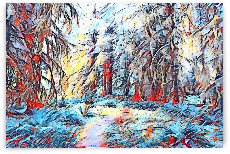 Hoh Rainforest by Annamadeitt