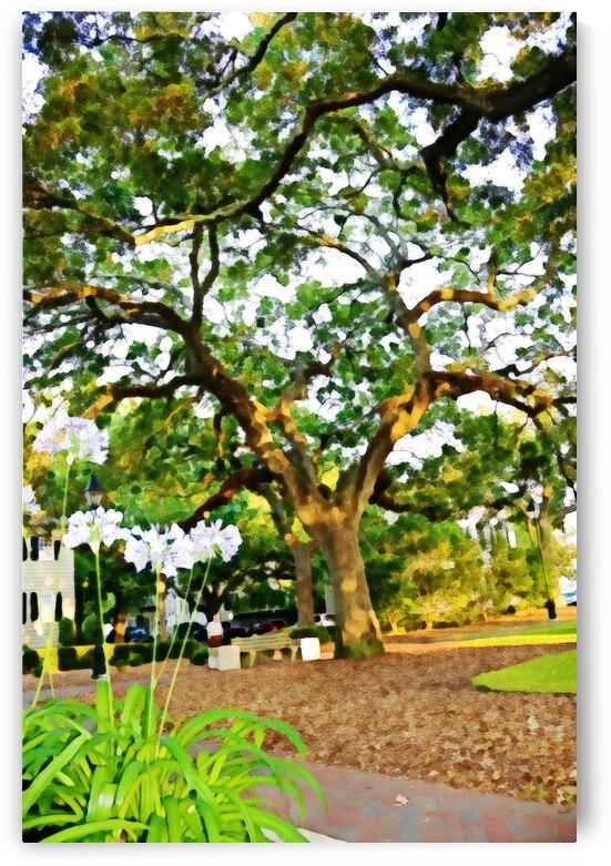 Savannah by Annamadeitt