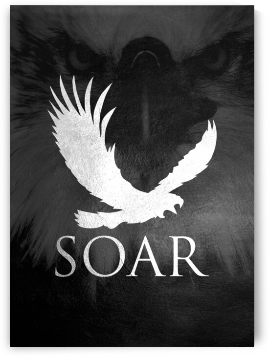 eagle soar Motivational Wall Art by ABConcepts
